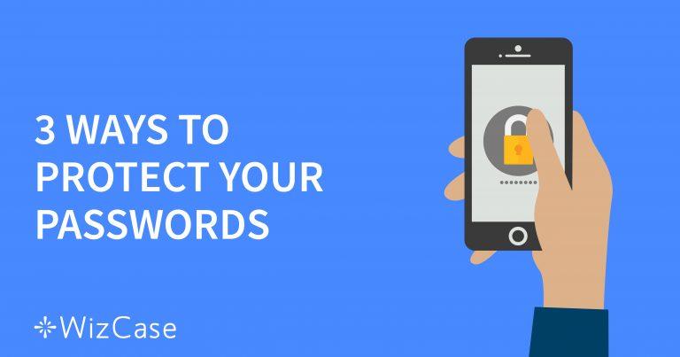 Sådan holder du dine passwords skjulte online